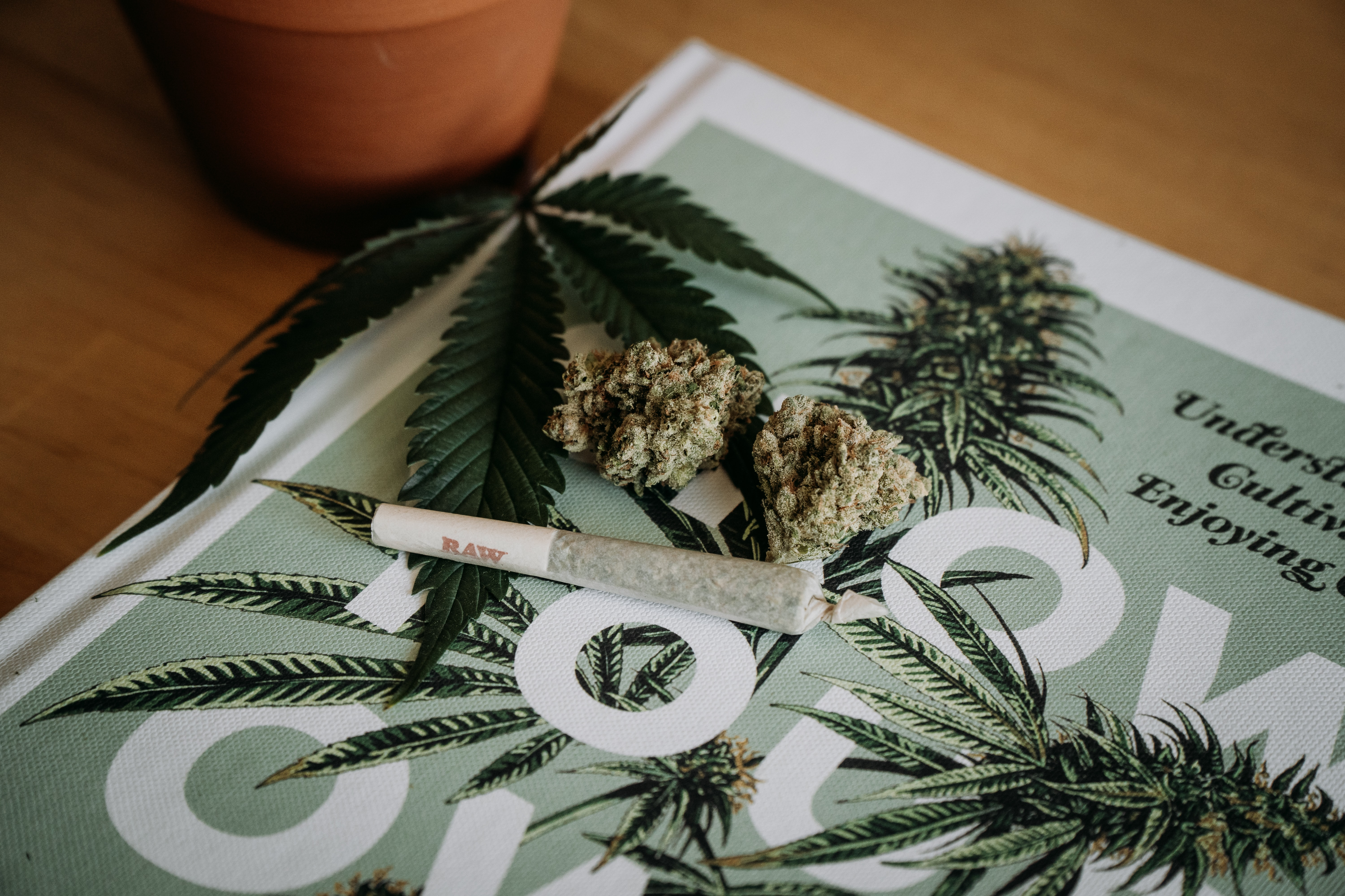 How Much is an Ounce of Weed?   Weed Measurements & Costs in Ontario